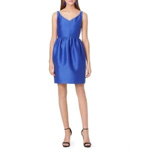 Kate Spade Blue Cupcake Dress